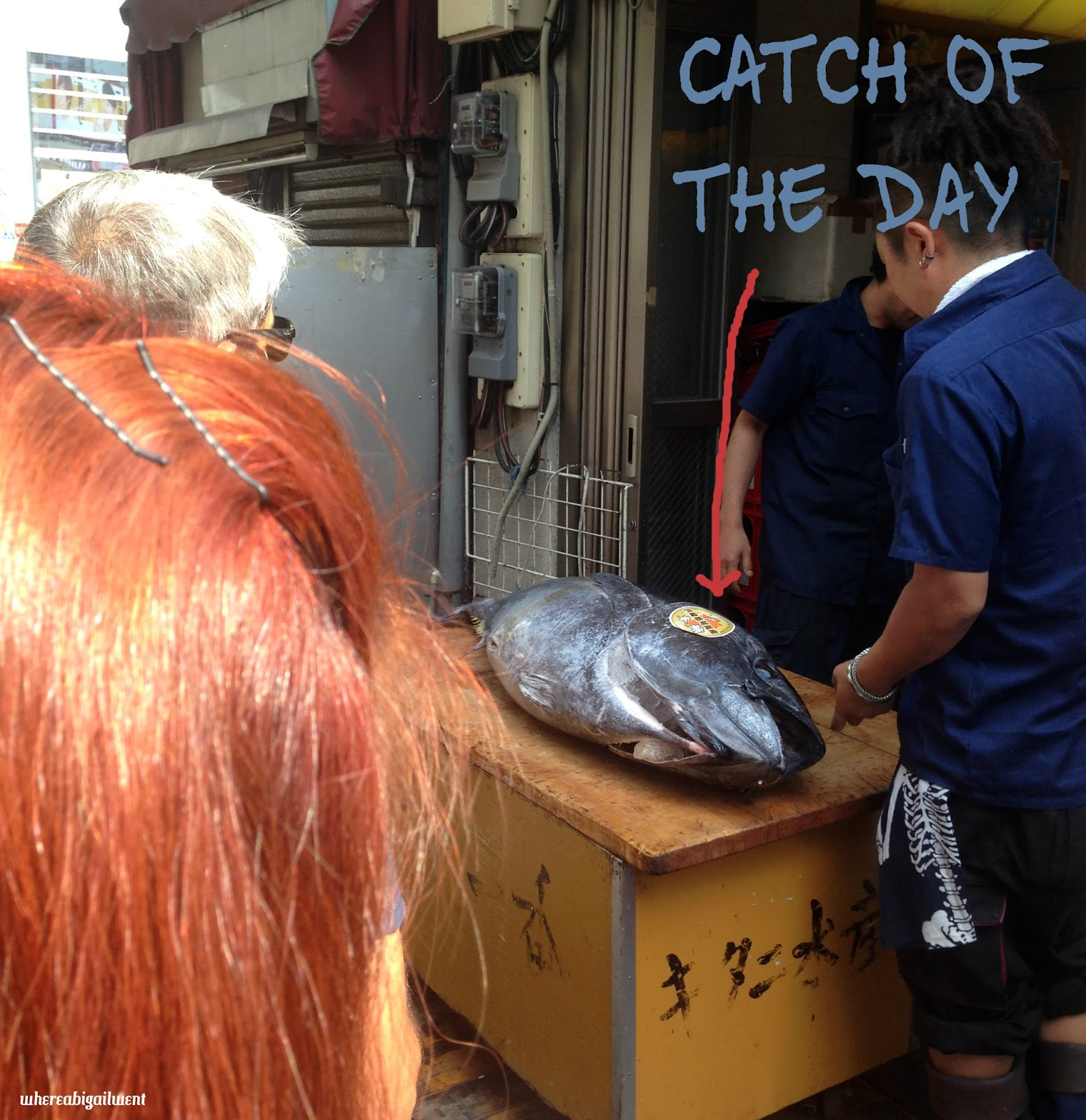Bluefin Tuna at Tsukiji Fish Market