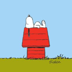 Pic Of Snoopy On Dog House
