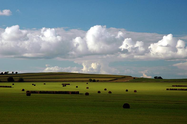 Nebraska Landscape