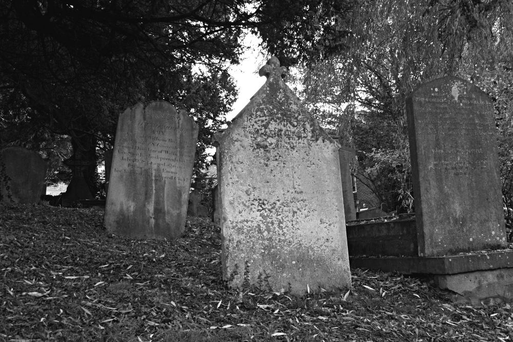 black and white picture of graves under trees