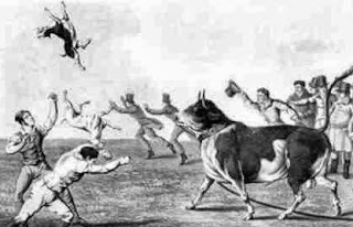 The-history-of-animal-baiting-&-fighting