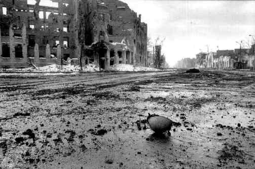 A Tribal War in Boston