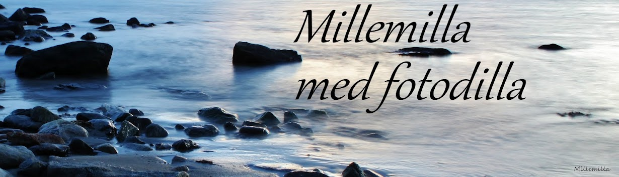Millemillla med fotodilla