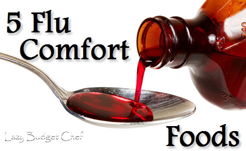 Lazy Budget Chef 5 Comforting Flu Foods
