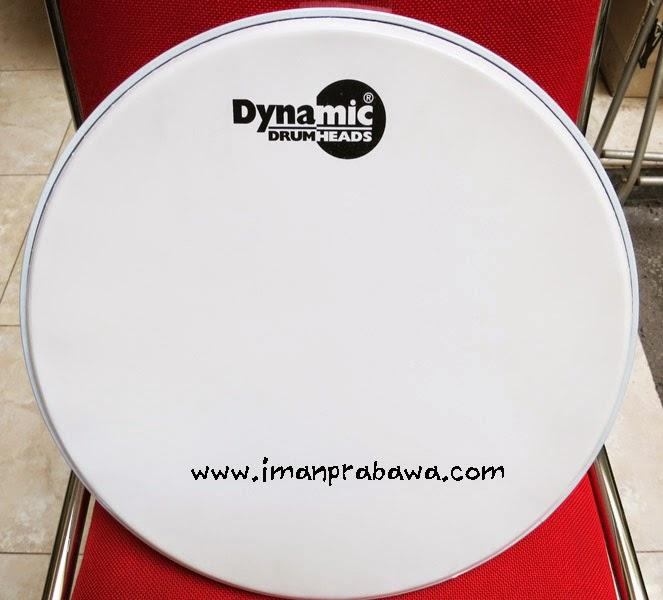 Single Ply Dynamic Drum Head