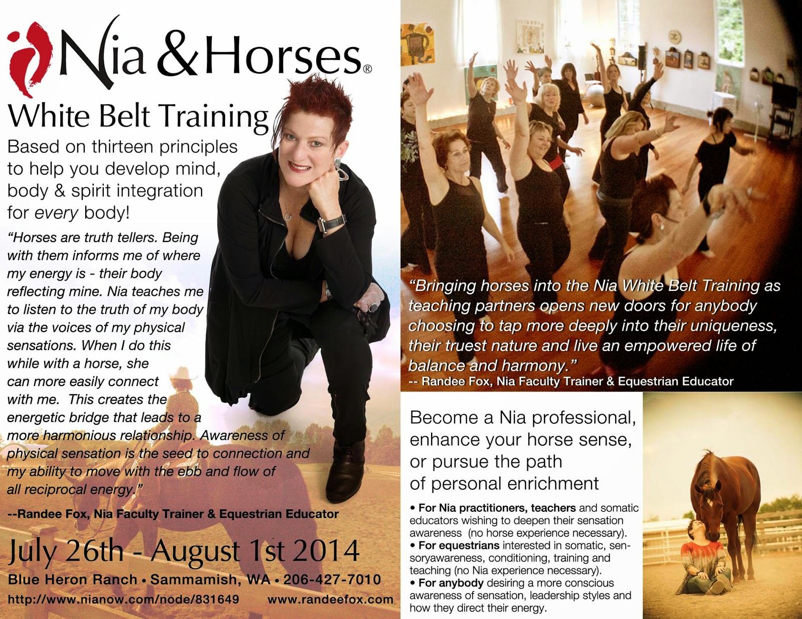 Dancing with Horses Communication with Body Language