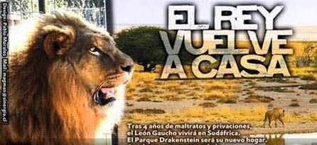 Revive la liberación de Gaucho