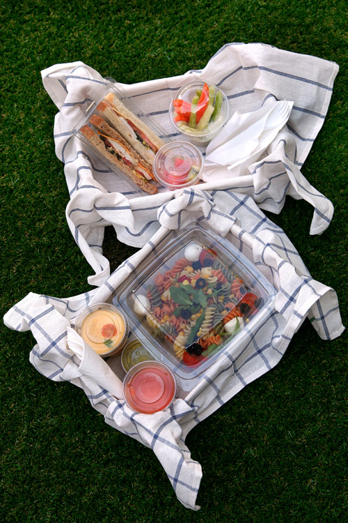 now it is finally summer in madrid for those days in which you feel like picnicking there is a great place in the middle of the salamanca district you