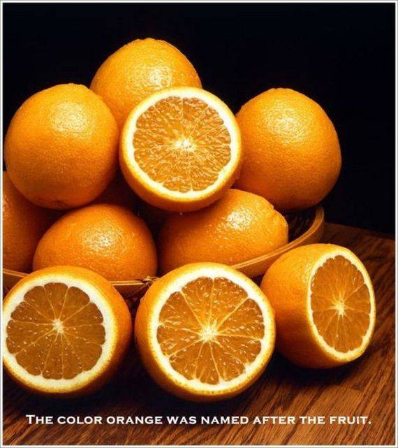 THE COLOR ORANGE WAS NAMED AFTER THE FRUIT.