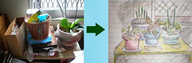 indoor garden, before & after