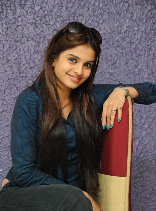 sheena shahabadi new , sheena latest photos