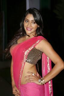 Kesha Khambhati at Best Actors Telugu Movie Audio Launch Stills 9.jpg