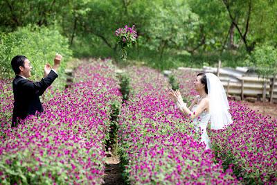 10 địa điểm chụp ảnh cưới ở Hà Nội
