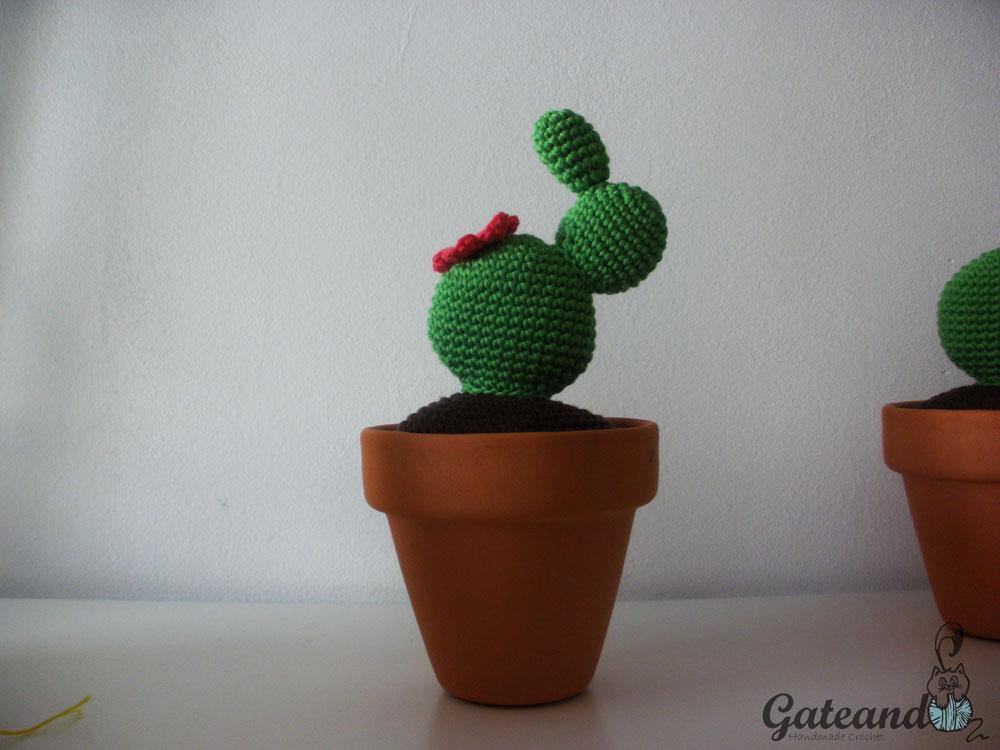 Patron Cactus Amigurumi Tejiendo Peru : Patron Cactus Amigurumi