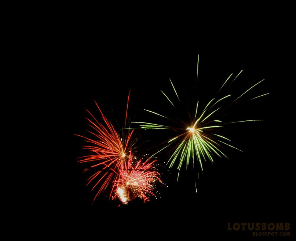 the crafty world of lotusbomb 4th of july backyard fireworks