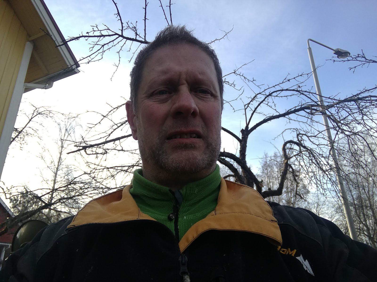 Omenapuiden, pihapuiden leikkaukset kaadot, pihanhoitosopimukset Tampere Pirkanmaa talousalueella