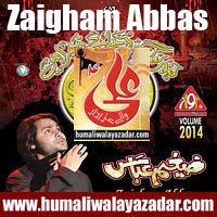 http://ishqehaider.blogspot.com/2013/11/zaigham-abbas-nohay-2014.html