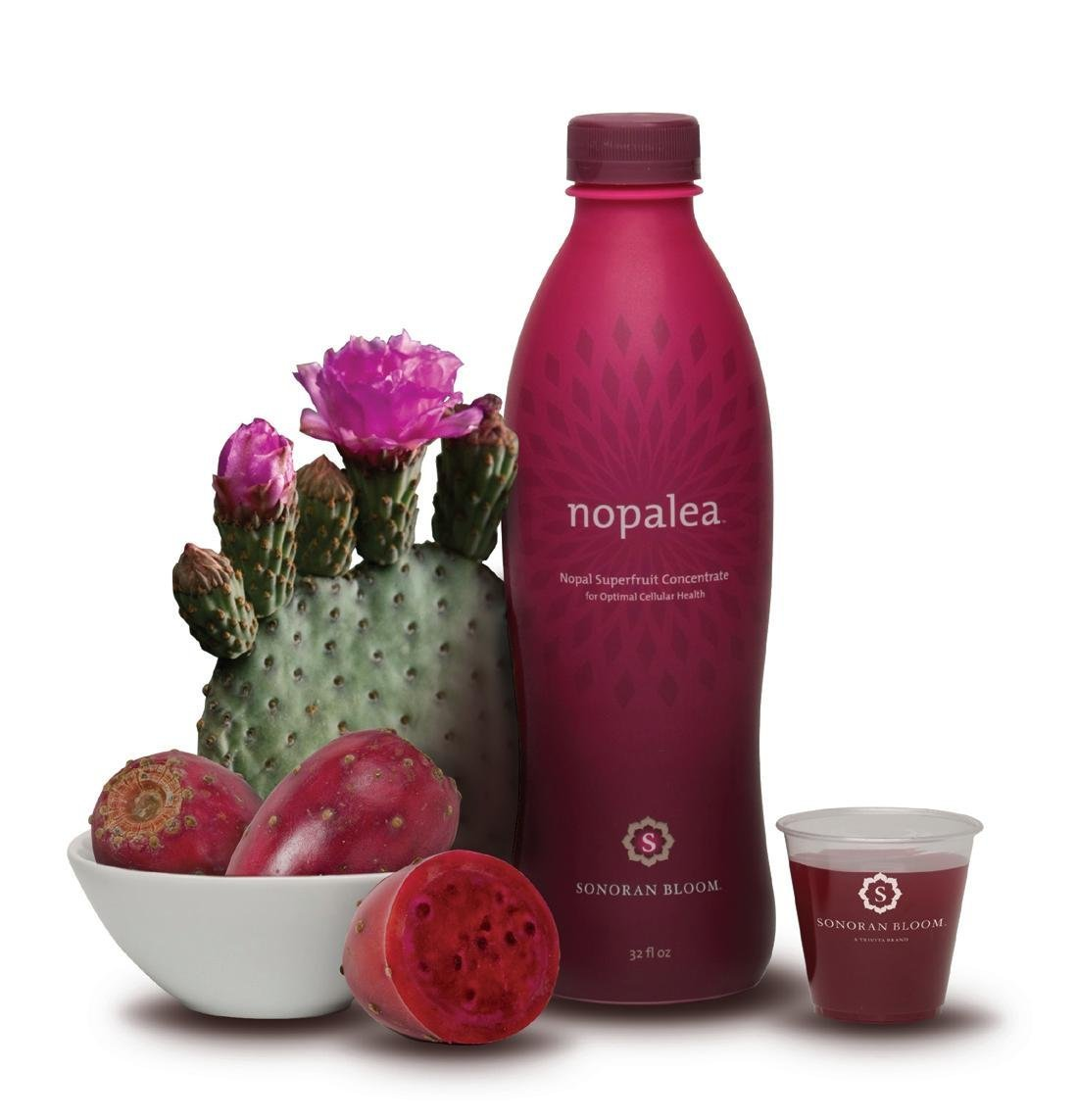 healthy fruit drinks to buy cactus fruit