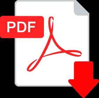 Documentos. Estado contable e Informe de Campaña Electoral 2017