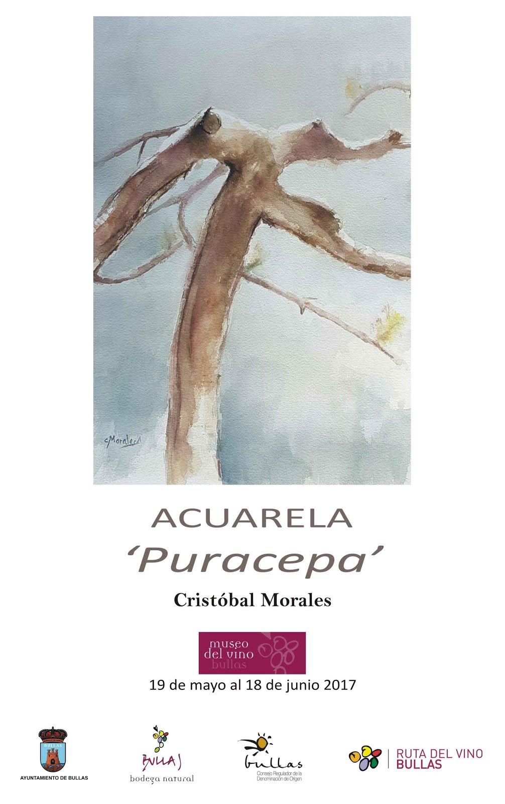 "Exposición de acuarela ""Puracepa"" de Cristóbal Morales"