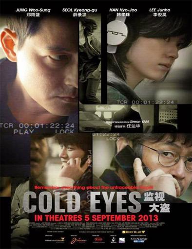 Ver Vigilancia extrema (Cold Eyes) (2013) Online
