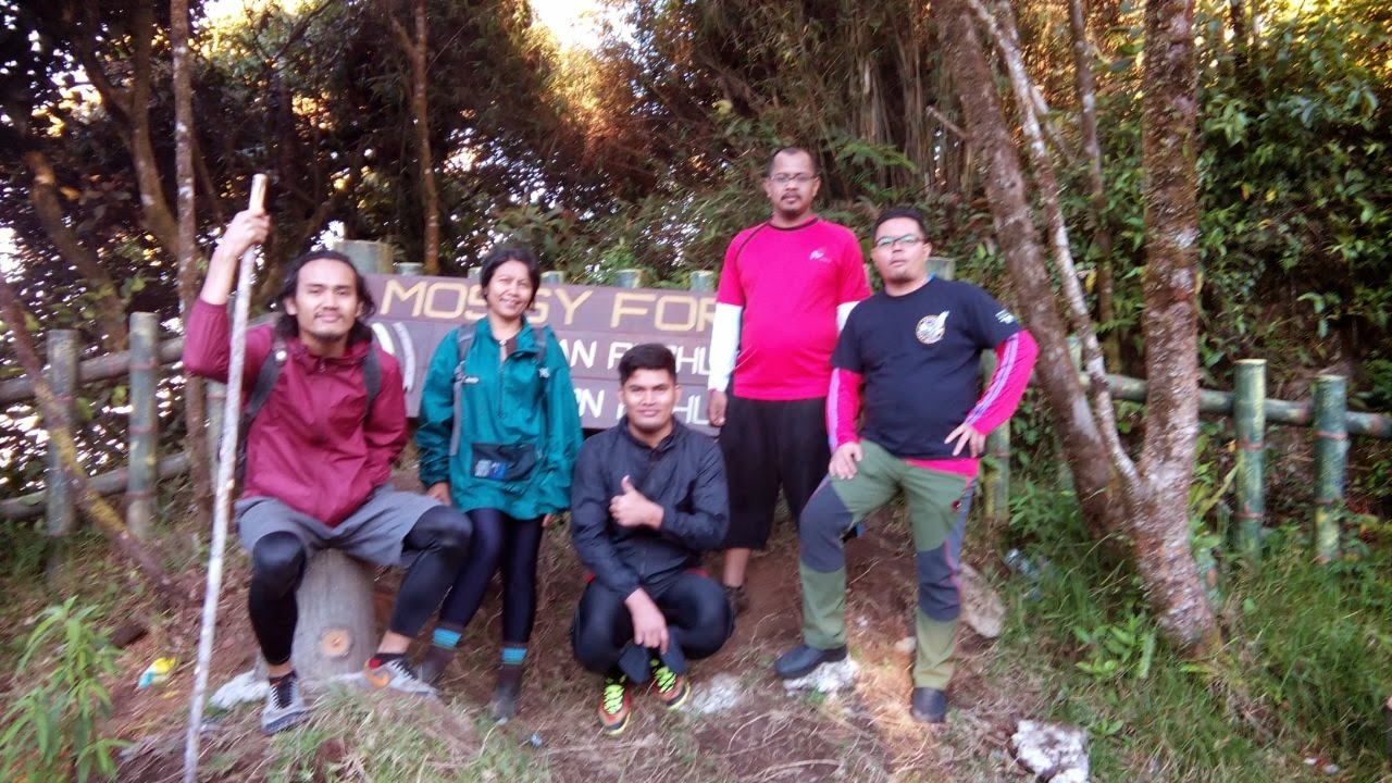 Gaya Hidup Sihat Hiking Gunung Irau