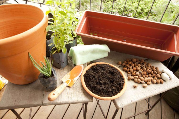 mini jardim de temperos : mini jardim de temperos:Dicas de como cultivar temperos e ervas em espaços pequenos.