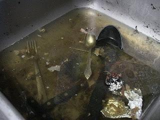 yucky sink!