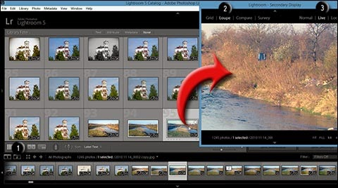 how to show second window in lightroom