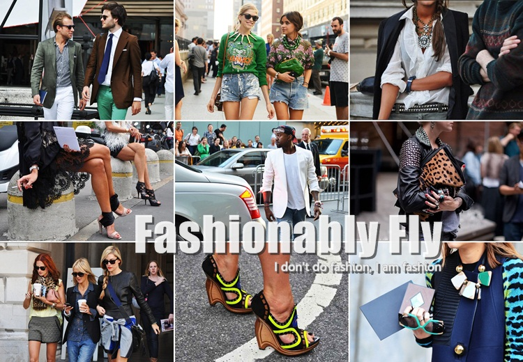 Fashionably Fly