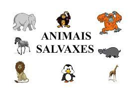 http://chiscos.net/almacen/lim/animais_salvaxes/animais_salvaxes.html