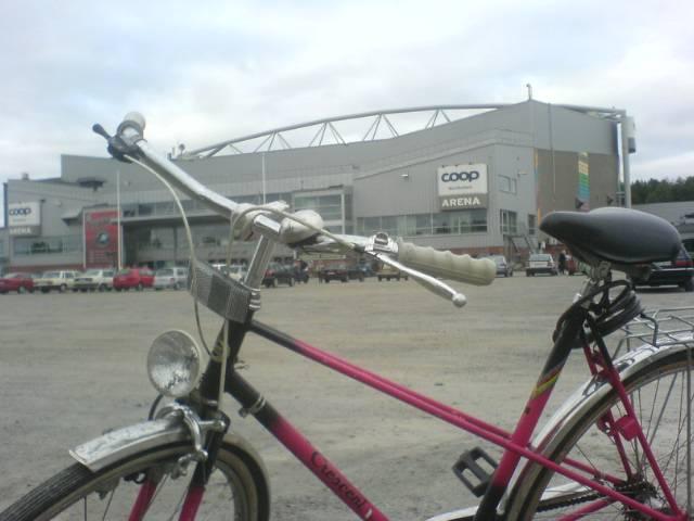 rosa damcykel coop