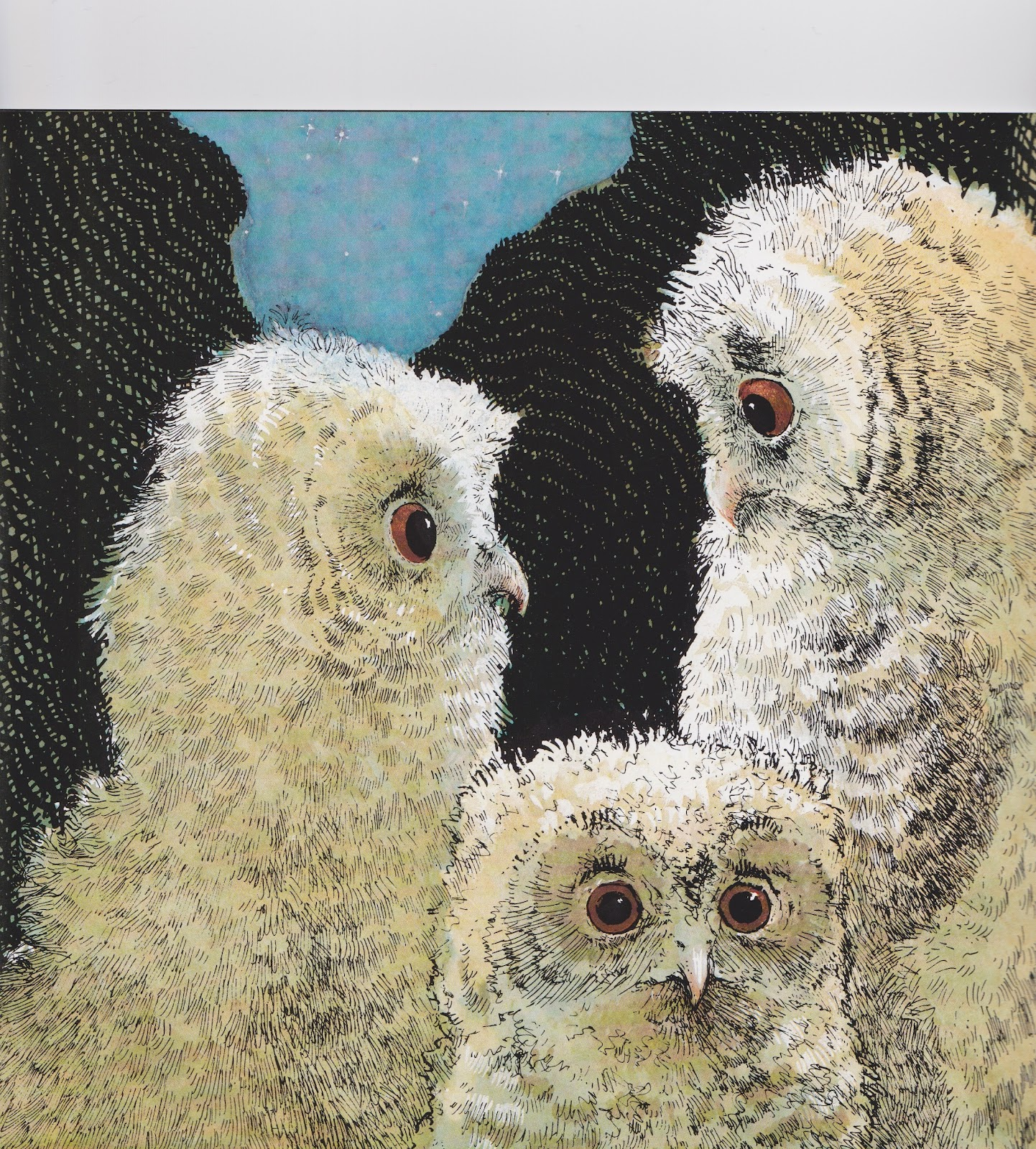 owl babies by martin waddell pdf