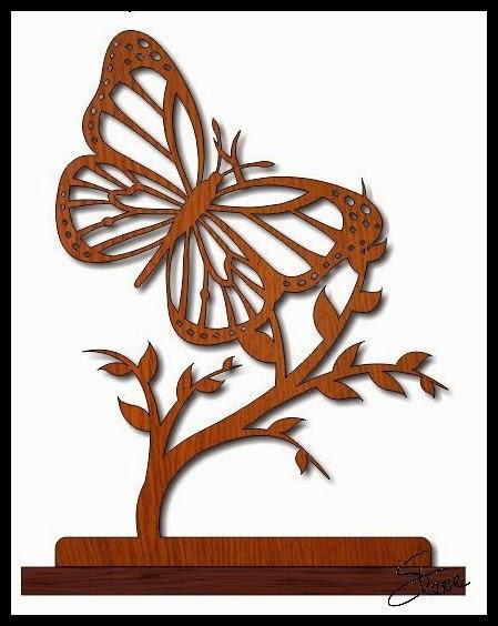 Luxury Butterflies  Boundary Hill Forest Blog