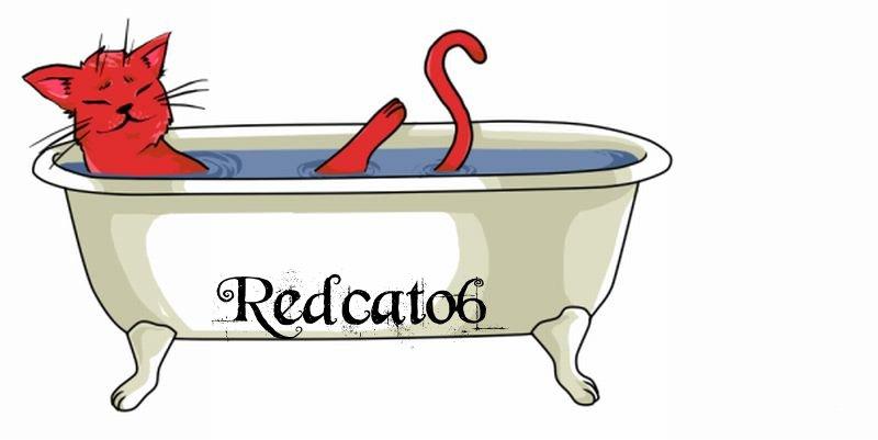Redcat06