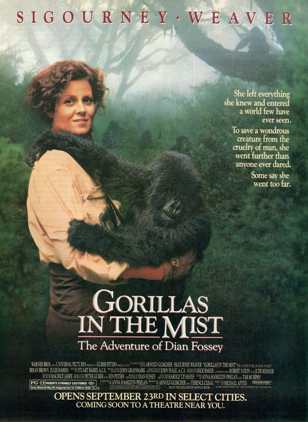 ภาพจากภาพยนต์เรื่อง Gorilla in the Mist