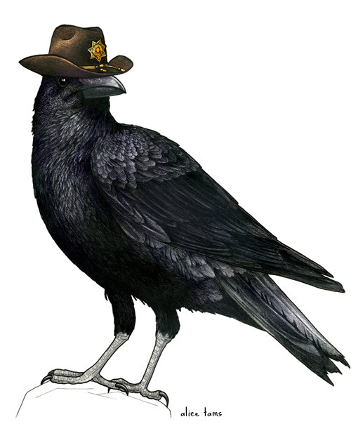 walking dead crow