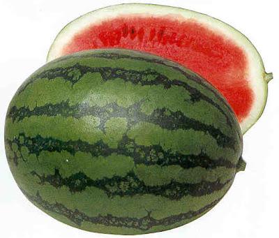 قائمة الفواكه D7302watermelon