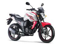 2011 Yamaha FZ-S
