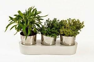 Ofertas para tu jardín
