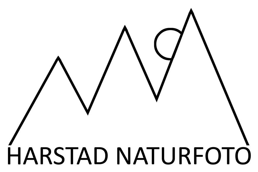 HARSTAD NATURFOTO