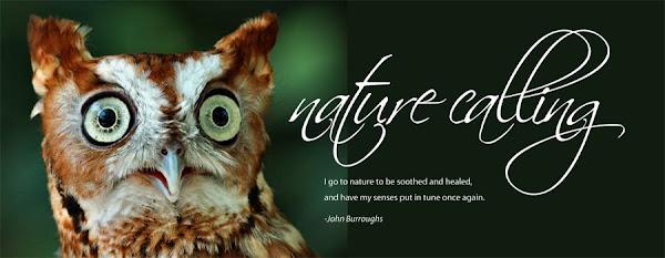 nature calling