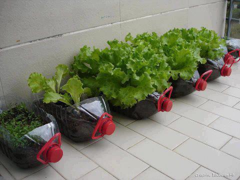si tienes jardin y estas pensando en ideas para reutilizar y decorar