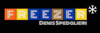 | F R E E Z E R * | Denis Spedalieri | tra New York e Torino |