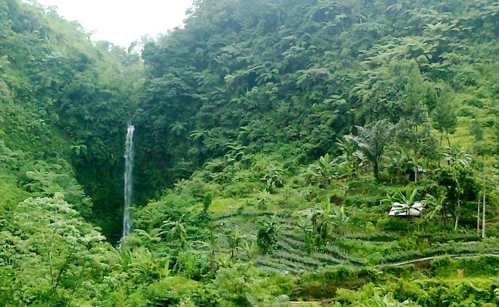 Gado Bangkong waterfall