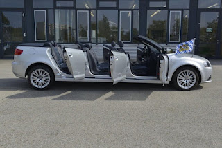 Audi car 6 Doors 8 Seats
