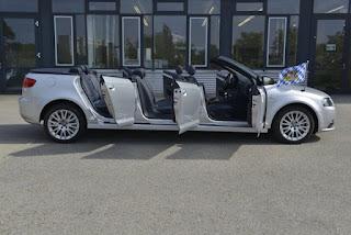 Audi car 6 Doors 8 Seats
