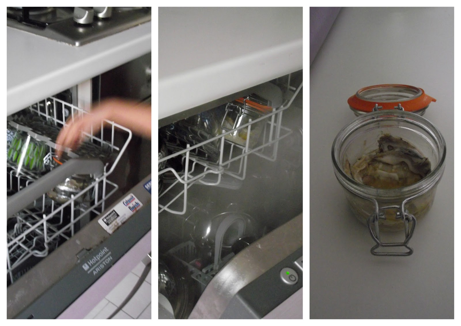 Rivoluzione afrodita dicembre 2011 - Cucinare nella lavastoviglie ...