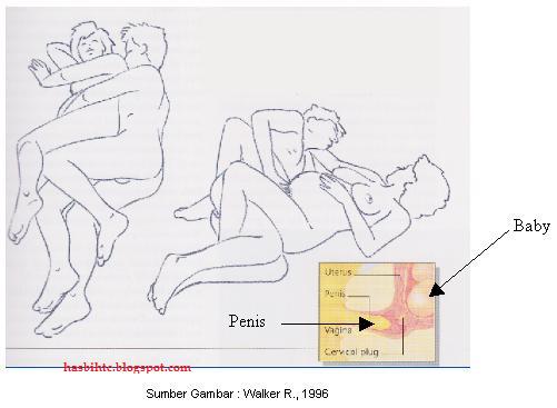 Sex intercourse position during pregnancy