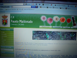 ENLACE A http://cpfmaldonado.juntaextremadura.net/